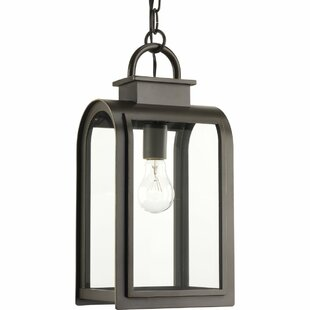 Colona 1-Light Hanging Lantern