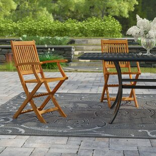 Cadsden Folding Patio Dining Chair (Set of 2)