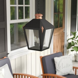 Ibarra 3-Light Outdoor Hanging Lantern by Darby Home Co