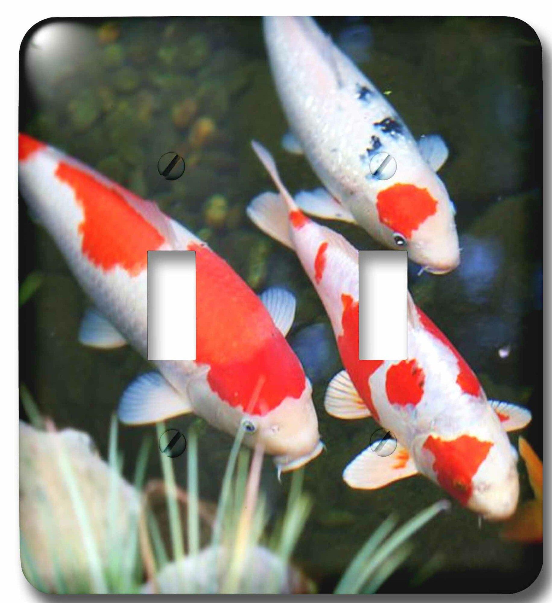 3drose Japanese Koi Fish 2 Gang Toggle Light Switch Wall Plate Wayfair