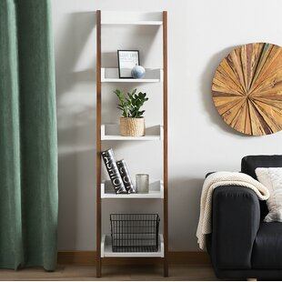 Haddan Ladder Bookcase by Latitude Run