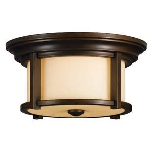 Tiffany 2 Light Outdoor Flush Mount By Sol 72 Outdoor