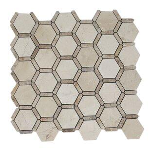 Ambrosia 2 x 2 Marble Mosaic Tile