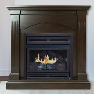 natural gas fireplace double sided shavonne vent free natural gas fireplace outdoor wayfair