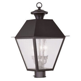 Darby Home Co Cynda Outdoor 3-Light Lantern Head