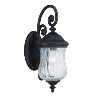 Best Price Berwyck 1-Light Outdoor Wall Lantern By Fleur De Lis Living