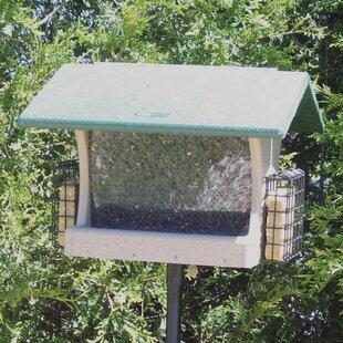 Birds Choice 7 Quart 2-Sided Recycled Suet Bird Feeder