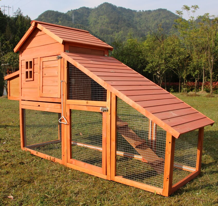 Chicken House newacme llc chicken house & reviews | wayfair