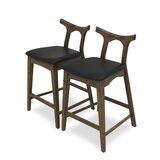 Fulda Bar & Counter Stool (Set of 2) by George Oliver