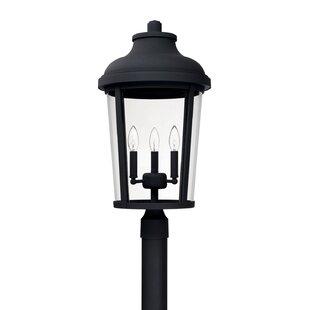 Alcott Hill Castor 3-Light 25.25