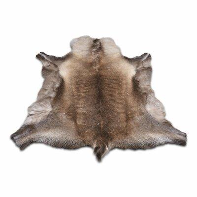 Buy Hide Amp Sheepskin Rugs Wayfair Co Uk