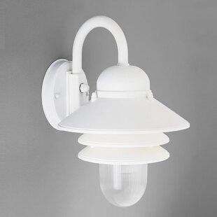 Alcott Hill Triplehorn 1-Light Barn Light