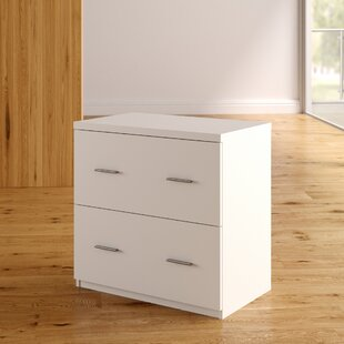 Latitude Run Magdalena 2 Drawer Lateral F..