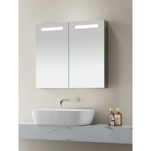 Antionette 70cm X 80cm Surface Mount Mirror Cabinet By Wade Logan