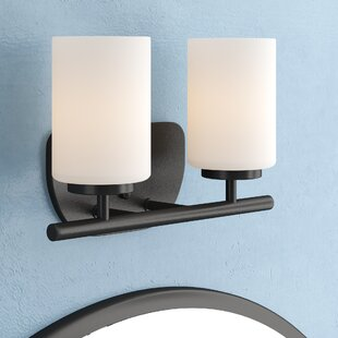 Gaskell 2-Light Vanity Light by Darby Home Co