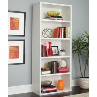 Decorative Standard Bookcase