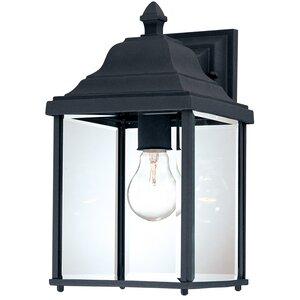 Talmadge Modern 1-Light Outdoor Wall Lantern