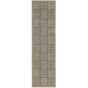Zaniyah Brown Indoor/Outdoor Area Rug By Breakwater Bay