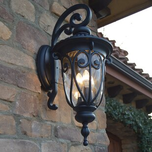 Reviews Lininger 3-Light LED Outdoor Wall Lantern By Astoria Grand