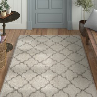 Best Reviews Samira Shag Ivory/Gray Area Rug by Laurel Foundry Modern Farmhouse