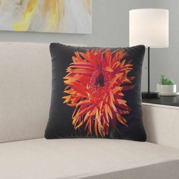 East Urban Home Flowerswork Spider Gerbera Daisy Watercolor Pillow Wayfair