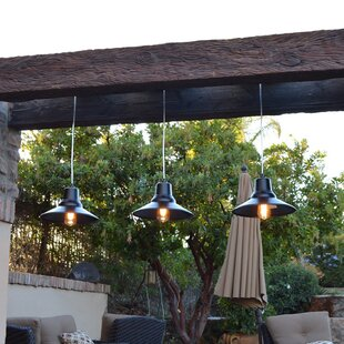 Great choice Chmielewski 1-Light Outdoor Pendant By Ebern Designs