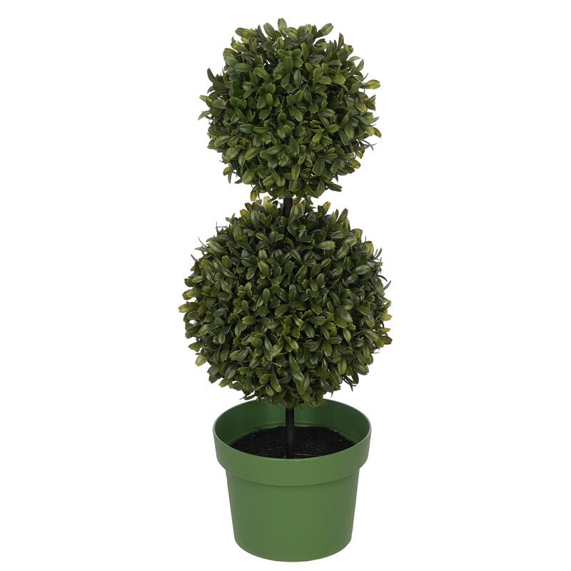 Charlton Home Artificial Double Ball Desktop Boxwood Topiary In Pot Wayfair