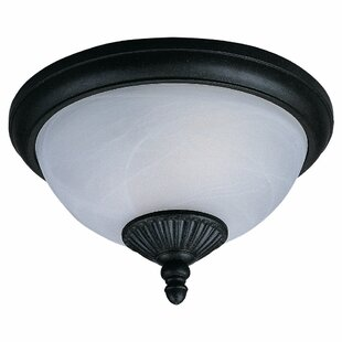 Inexpensive Nicollet 2-Light Outdoor Flush Mount By Bloomsbury Market