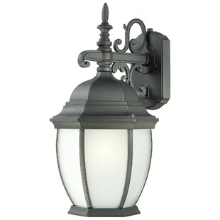 Charlton Home Brew 1-Light Outdoor Wall Lantern