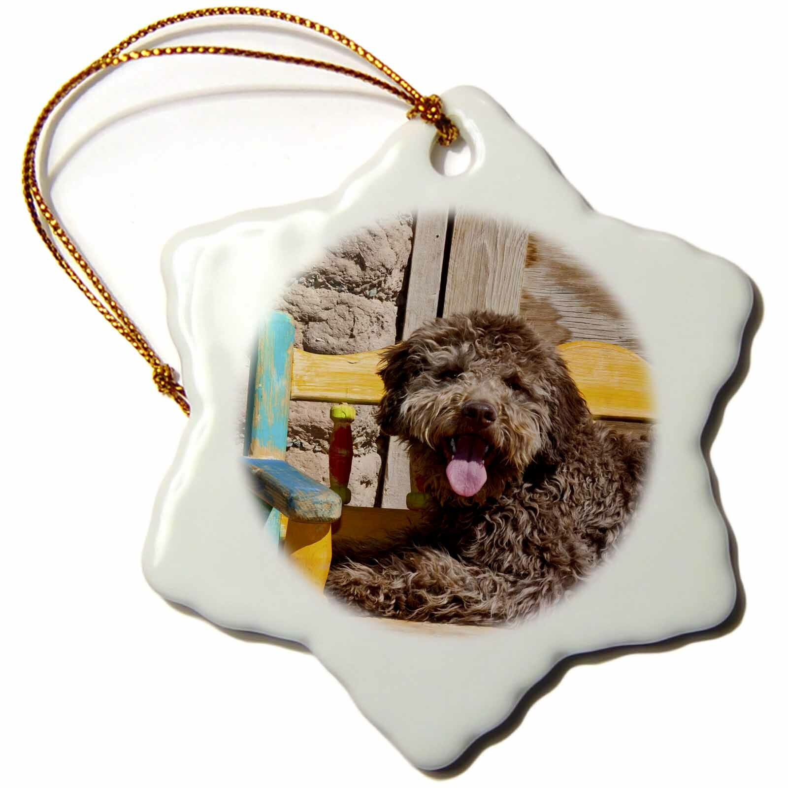 The Holiday Aisle Lagotto Romagnolo Lying On A Wooden Bench Snowflake Holiday Shaped Ornament Wayfair