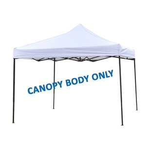 Canopy Frame by Trademark Innovations