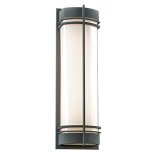 Mary 2-Light Outdoor Flush Mount by Longs..