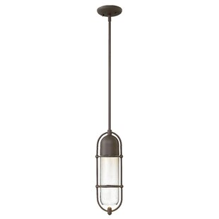 Perry 1-Light Outdoor Pendant by Hinkley Lighting Herry Up