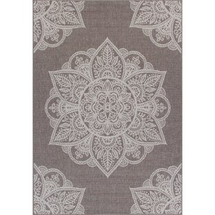 Rosado Weather-Proof Gray Indoor/Outdoor Area Rug