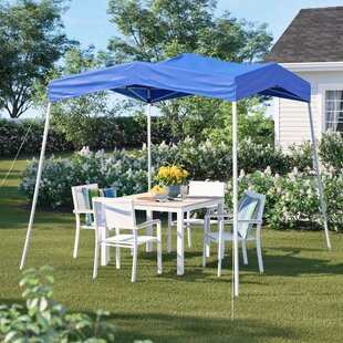 Baskerville 8 Ft. W x 8 Ft. D Steel Pop-Up Canopy by Sol 72 Outdoor