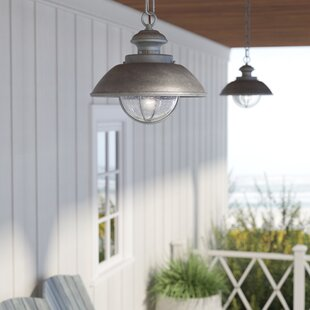 Beachcrest Home Archibald 1-Light Outdoor Pendant