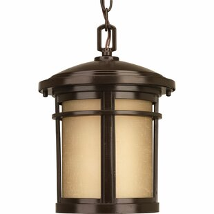 Best Chamberlain 1-Light Hanging Lantern By Bloomsbury Market