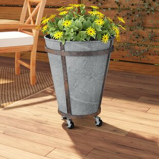 Chacra Tin Pot Planter