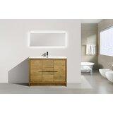 Lefebvre 47 Single Bathroom Vanity Set by Orren Ellis