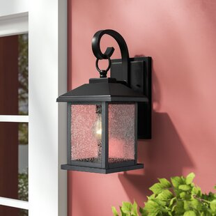 Magnusson 1-Light Outdoor Wall Lantern