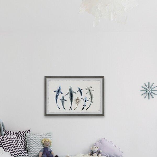 Isabelle Max Chalfant Shark Types Ii Framed Art Wayfair
