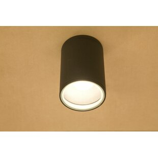 Up To 70% Off Collin 1-Light Outdoor Flush Mount