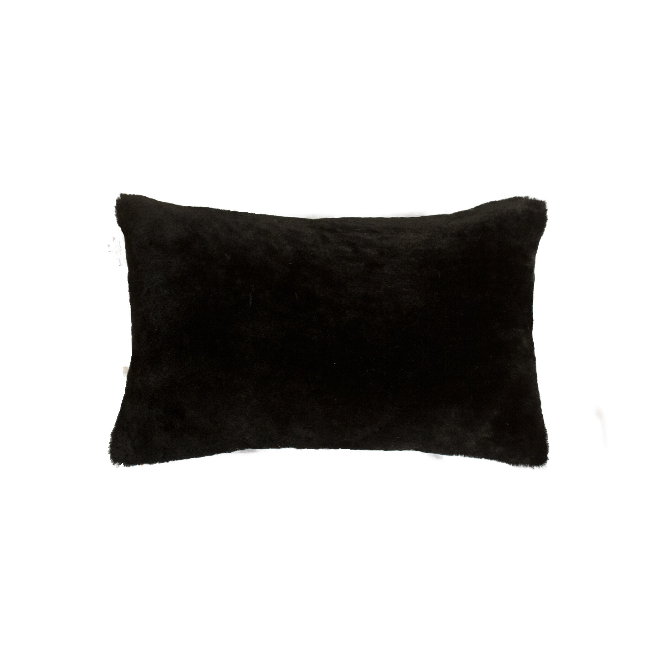 Union Rustic Allura Rectangular Leather Pillow Cover And Insert Reviews Wayfair