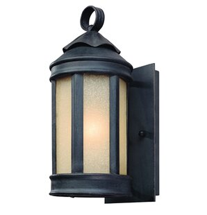 Theodore 1-Light Outdoor Sconce by Darby Home Co
