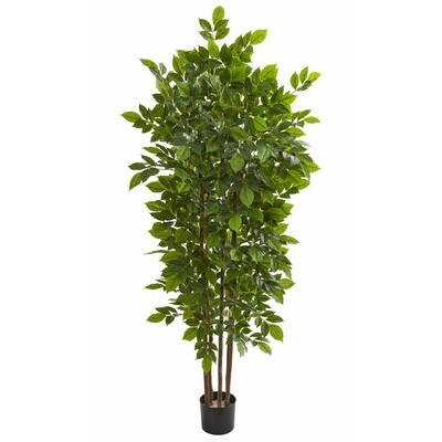 Bloomsbury Market Real Touch Floor Evergreen Tree In Planter Reviews Wayfair