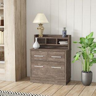 Best Digregorio Vertical Filing Cabinet by Ebern Designs