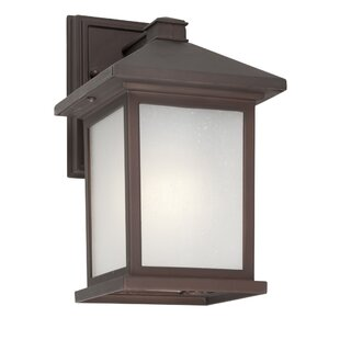 Read Reviews Raiden Outdoor Wall Lantern By Millwood Pines