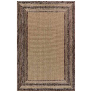Desantiago Mocha Indoor/Outdoor Area Rug