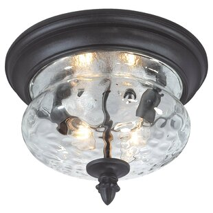 excellence great outdoors by minka ardmore 2 light flush mount in
