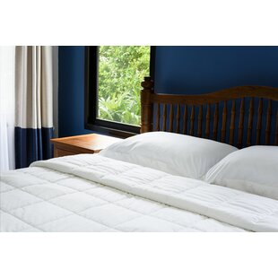 Luxury Soft Oversized Lightweight All Season Down Alternative Comforter